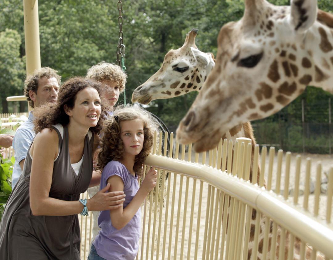 Dagje uit - Ouwehands Dierenpark